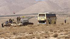 Сирийские военные и автобус с боевиками ИГ (группировка Исламское государство, запрещена в РФ) в районе Западного Каламуна