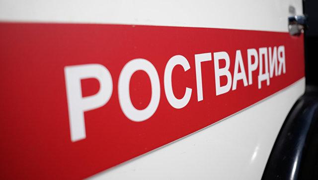 Росгвардия готова действовать жестко в случае провокаций на выборах-2018