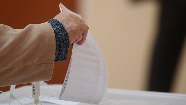 Руководитель  ЦИК пообещала разобраться совсеми фактами вбросов навыборах
