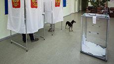 На избирательном участке в единый день голосования. 10 сентября 2017