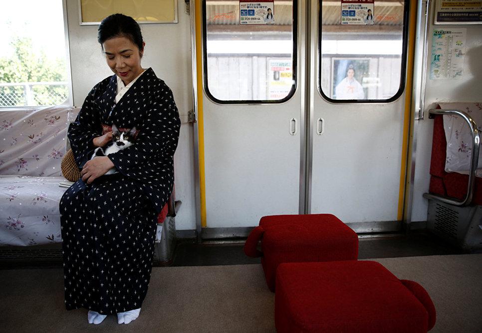 Пассажирка гладит кошку в котопоезде в городе Огаки, Гифу, Япония. 10 сентября 2017