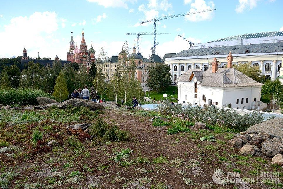 Зелень в природно-ландшафтном парке Зарядье в Москве