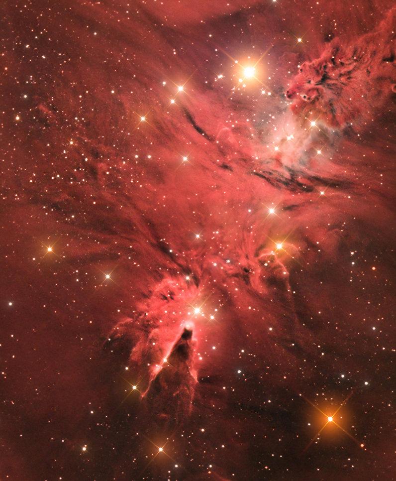 Снимок фотографа Джейсона Грина из Гибралтара The Cone Nebula (NGC 2264), получивший специальный приз за лучший дебют в фотоконкурсе Insight Astronomy Photographer of the Year 2017