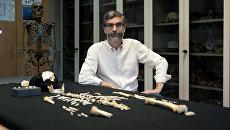 Антонио Розас и останки неандертальского ребенка