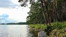 До конца года в России будет создано шесть новых ООПТ федерального значения