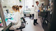 Специалисты компании Genotek в лабораториях компании в Москве
