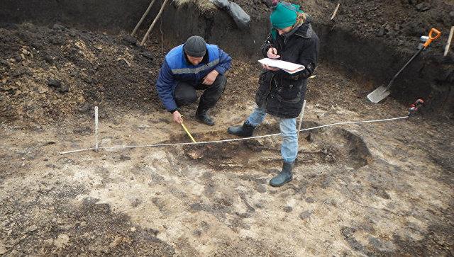 Белгородские археологи нашли останки молодой женщины и ребенка в  могильнике скифов. 31 октября 2017