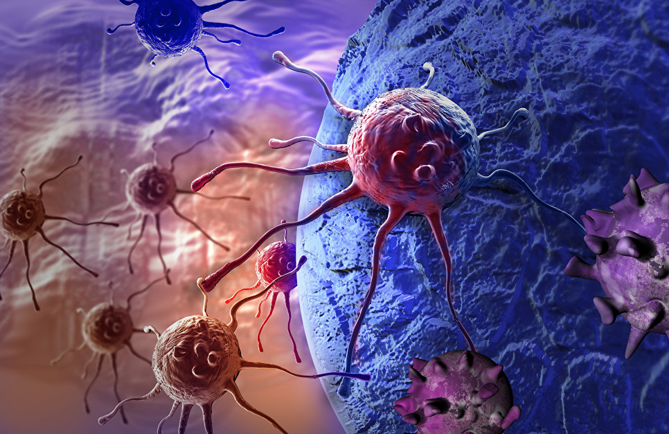Клеточный листопад: мешает ли рак обретению бессмертия человеком?