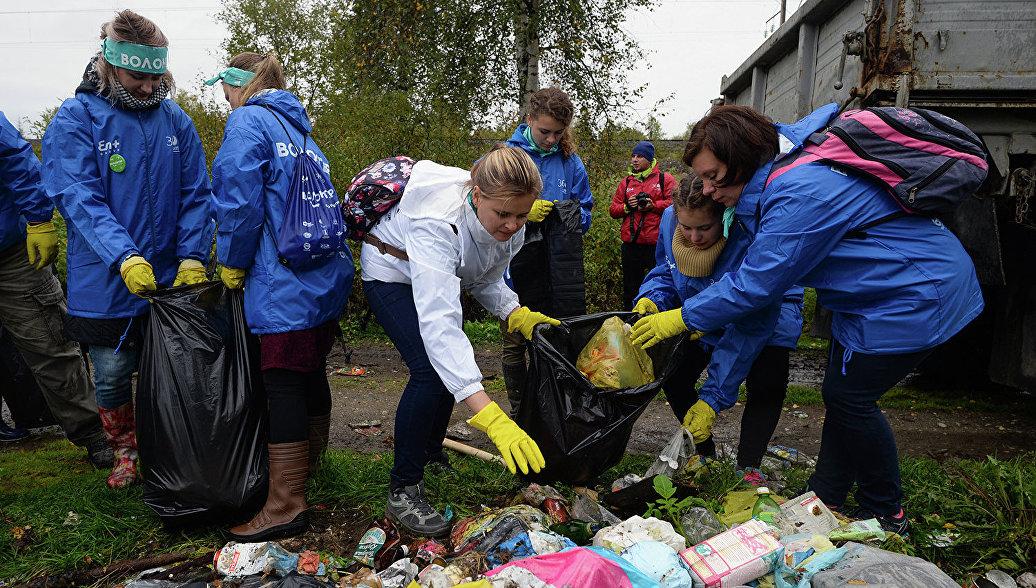 Томские активисты ОНФ приняли участие в уборке Петровского кедровника