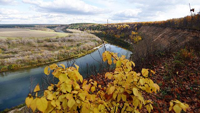 В Воронежской области может появиться кластер переработки сельхозпродукции