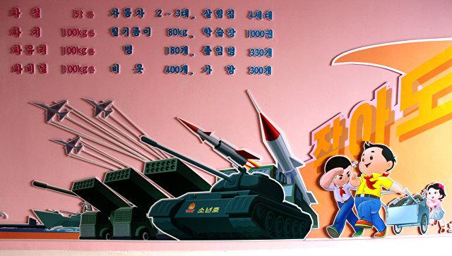Ежик с базукой, белочка на танке: как детей в КНДР готовят к войне и миру