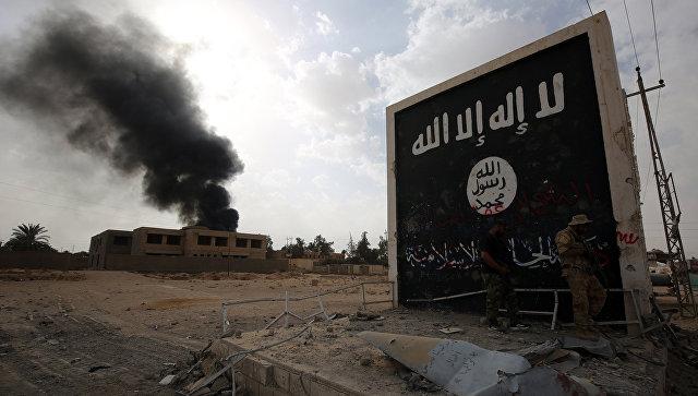 Стена с флагом ИГ (террористическая организация, запрещена в РФ) во время операции по освобождению Эль-Каима от террористов