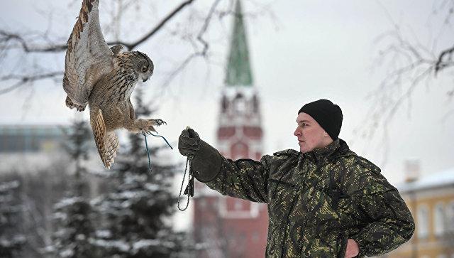 Ястребы начали защищать Кремль отворон