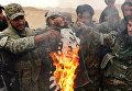 Бойцы отряда народного ополчения Соколы пустыни сжигают флаг запрещенной в России группировки ИГИЛ*, снятый с отбитой у боевиков цитадели Пальмиры