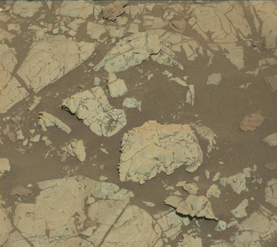 Марсоход Curiosity нашел структуры, похожие по форме на окаменелости