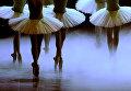 Танцовщицы Национального театра танца Испании на репетиции перед премьерой Дон Кихота в театре Маэстранса в Севилье