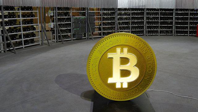 Стеллажи с фермами для майнинга криптовалют. Архивное фото