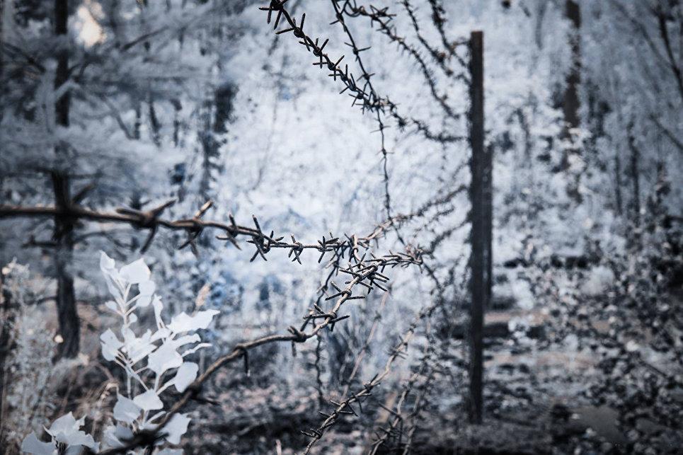В скором времени планируется создать в 30-километровой зоне вокруг станции Чернобыльский радиационно-экологический заповедник, а также объекты по выработке электроэнергии из альтернативных источников.