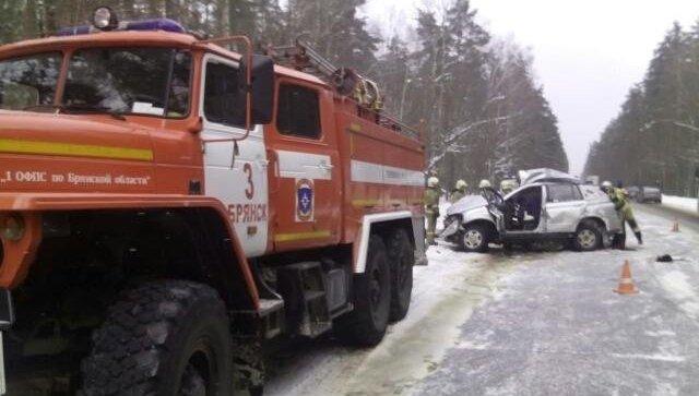 Три человека погибли в ДТП с грузовиком под Брянском