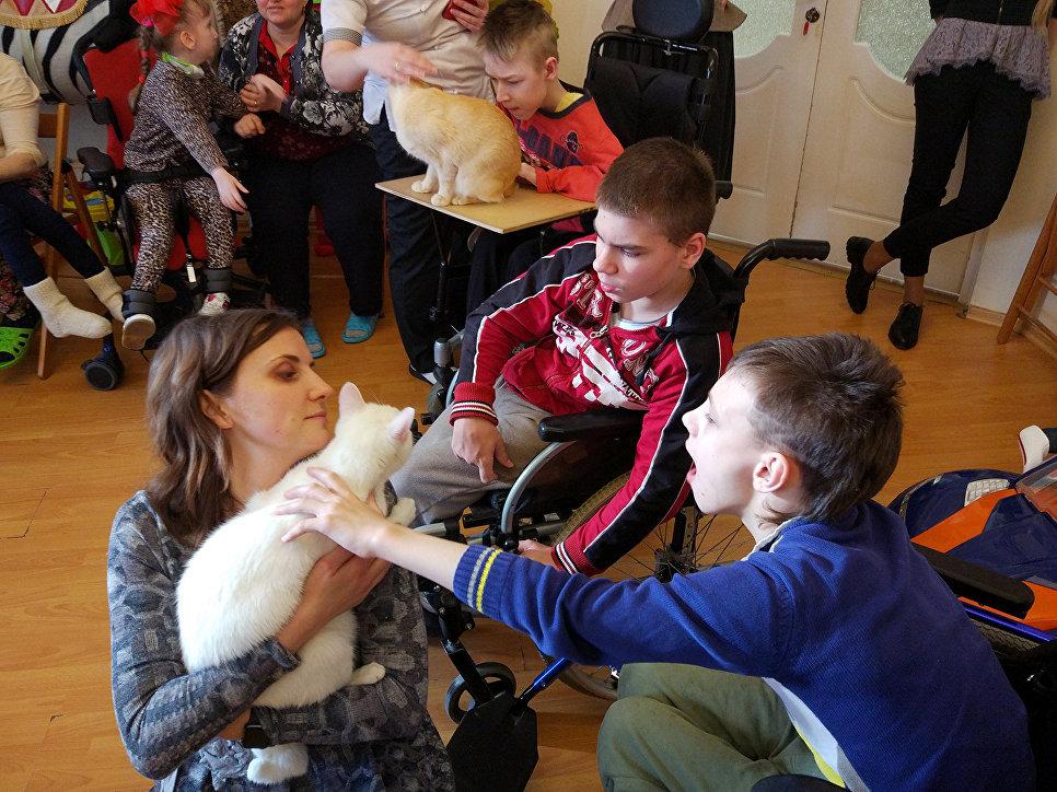 Дети сначала боялись даже прикоснуться к котам, а спустя время смело гладили пушистых терапевтов и даже кормили с рук
