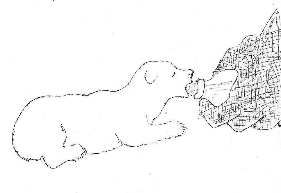 Рисунок Валентина Сергеевича Пажетнова.