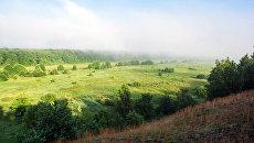 Норинский лес получил статус ООПТ