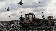Бульдозер на полигоне твердых бытовых отходов. архивное фото