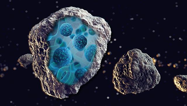 В поисках ископаемых бактерий в метеоритах