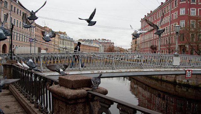 В Петербурге установят шестиметровый арт-объект на канале Грибоедова