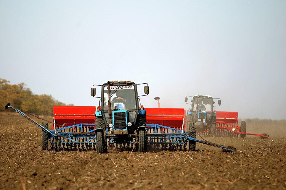 Картинки по запросу Россия стала аграрной сверхдержавой