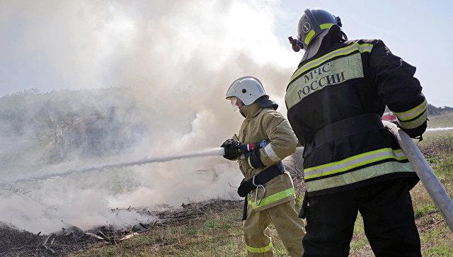 Природный пожар. Архивное фото