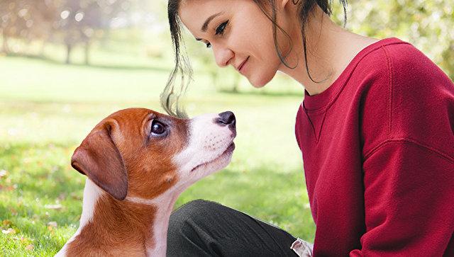 Собаки умеют читать по нашим лицам