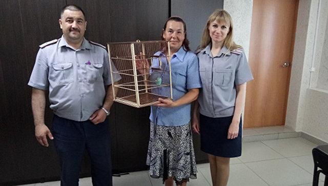 Возвращение хозяйке попугая, залетевшего на территорию Невьянской колонии в Свердловской области. 10 июля 2018