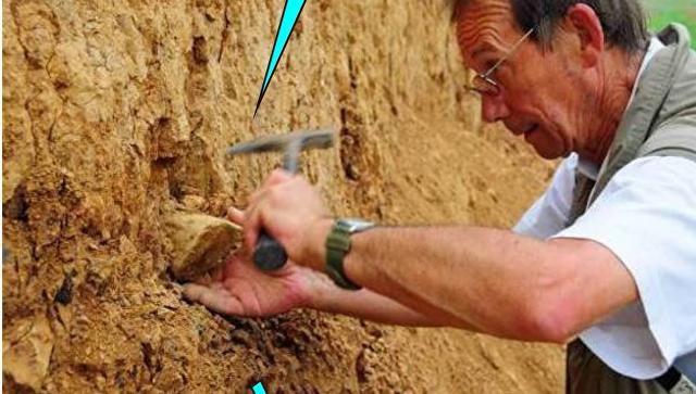 Ученый извлекает орудие труда из отложений песка