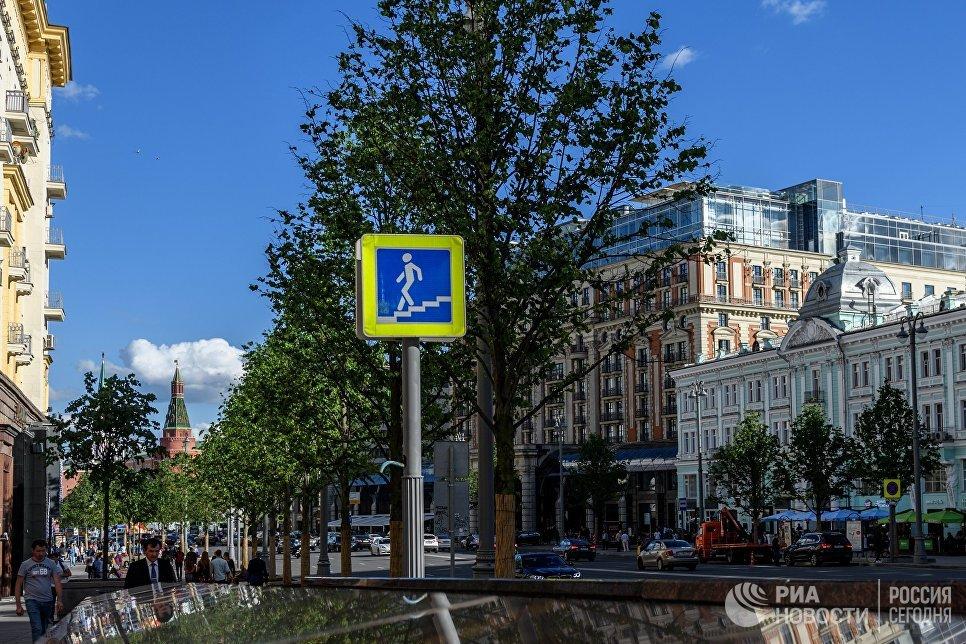 Липовая аллея на Тверской улице в Москве