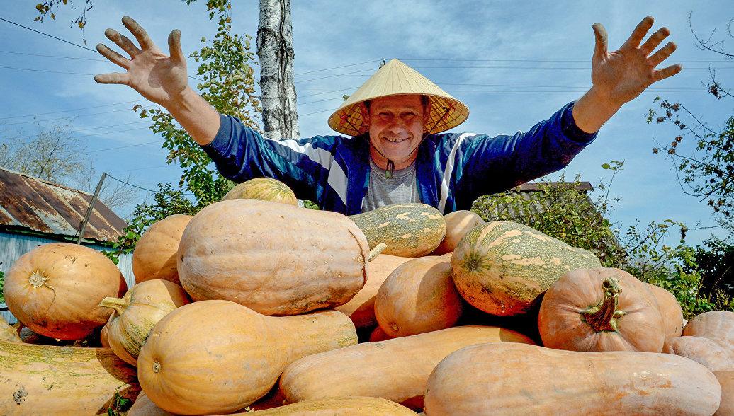 Сбор урожая овощей в Приморском крае