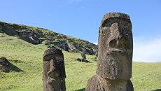 Истуканы-моаи, чьей постройкой, как выяснили ученые, занималась специальная каста скульпторов