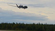 Стратегический разведывательный беспилотный летательный аппарат ВВС США RQ-4 Global Hawk