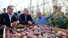 Рабочая поездка президента РФ В. Путина и премьер-министра РФ Д. Медведева в Ставропольский край