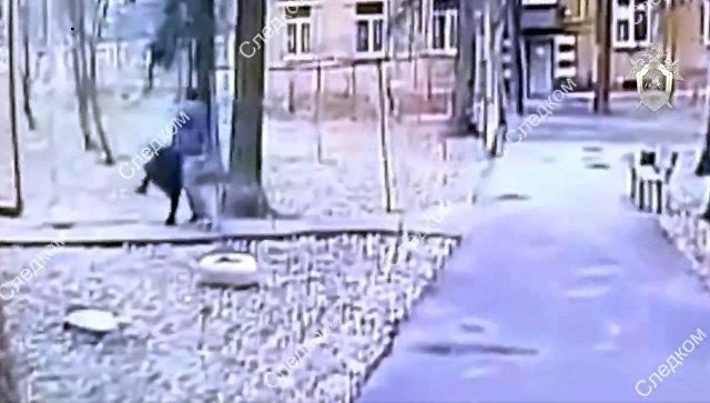 Стоп-кадр видео покушения на пенсионерку в Москве. 12 ноября 2018