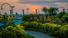 Подсолнечные сады в международном аэропорту Чанги в Сингапуре