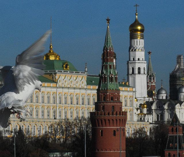 Голуби на Патриаршем мосту в Москве