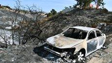 Автомобиль, сгоревший в результате лесных пожаров, в окрестностях города Малибу в штате Калифорния. 17 ноября 2018