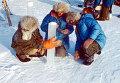 Участники арктической экспедиции Комсомольской правды изучают дрейфующие льды