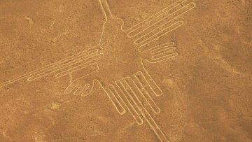 Изображения в пустыне Наска