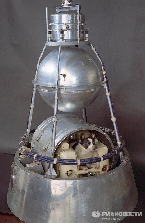 Второй искусственный спутник Земли с космонавтом Лайкой на борту