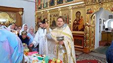 Православные вологодцы осветили яблоки в Преображение Господне