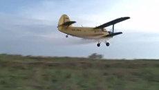 Саранчу в Астраханской области уничтожают с помощью самолетов Ан-2