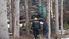 Начало строительства трассы через Химкинский лес. Архив