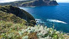 Усиление Курильских островов как гарантия мира